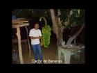 CRFC-Roberto.L.B.I.Mac.-03.9.14