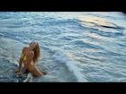 Hannah Ferguson's SI Swimsuit 2016 Outtakes