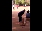 Cricketing Magic Ball