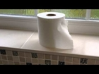 Teenage Instructional Video - How to change a toilet roll