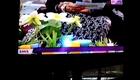 Ayesha Khalid Wearing KOTAK in ARY Zindagi's Naheed Ansari Show!